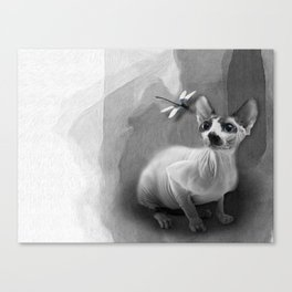 Sphynx No 21 Canvas Print