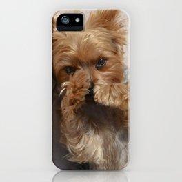 Put Em' Up - The Yorkie Dog iPhone Case