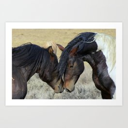Two Brown Wild Horses Nuzzling Art Print