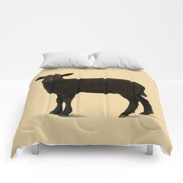 Black Lamb // Orange Comforters