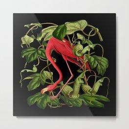 Flamingo Black Metal Print