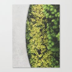Greenly Canvas Print