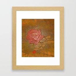 A Rose Series I Framed Art Print