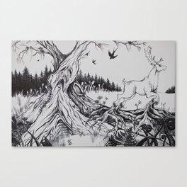 Forest of Fear Canvas Print