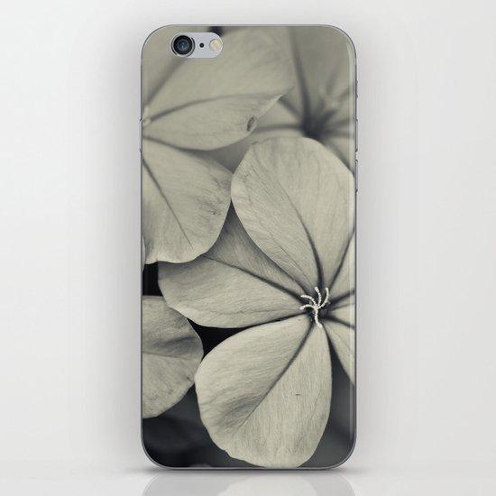 Like Silver iPhone & iPod Skin
