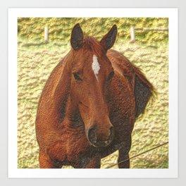 Painted brown Horse Art Print