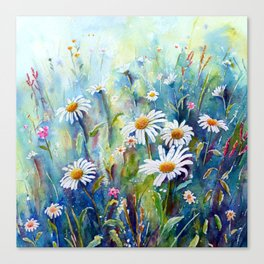 Watercolor Daisy Field Canvas Print