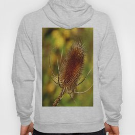 Thistle in Autum Hoody