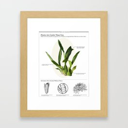 Plants are Cooler Than You Framed Art Print