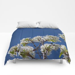 Spring Blossoms Comforters