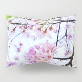 Under the Cherry Blossom Tree-picture 1 Pillow Sham