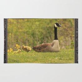 Canada Goose Family Rug