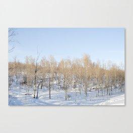 Snowfall and treetops Canvas Print