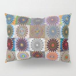 Invigorating Emergence Collection Pillow Sham