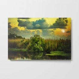 Goodnight, Louisiana Metal Print