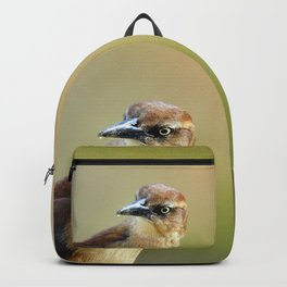 Female Great-tailed Grackle Backpack