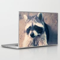racoon Laptop & iPad Skins featuring racoon by oslacrimale