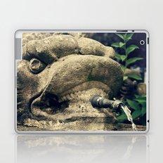 Fuente Laptop & iPad Skin
