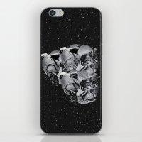 skulls iPhone & iPod Skins featuring Skulls by Mrs Araneae