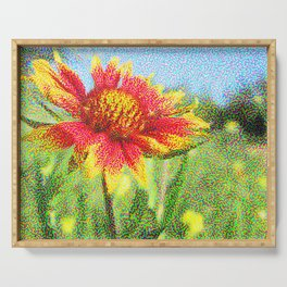 Red Flower in a Field Serving Tray