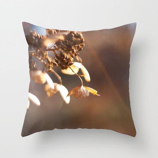 Butterflies in December Throw Pillow