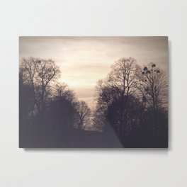 dreamy trees Metal Print