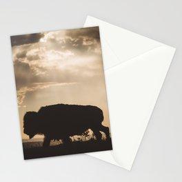 Bison in the Storm - Badlands National Park Stationery Cards