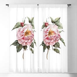 Wilting Pink Rose Watercolor Blackout Curtain
