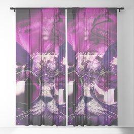 wtf Sheer Curtain