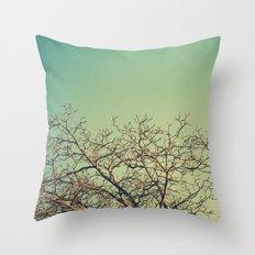 Arañazos Throw Pillow