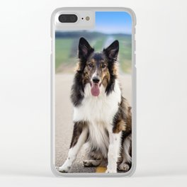 Rough Collie Clear iPhone Case