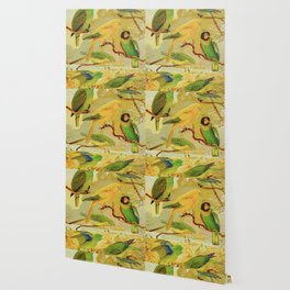 Amazonian Birds by Göldi & Emil August Belem Brazil Colorful Tropical Birds Scientific Illustration Wallpaper