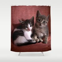 kittens Shower Curtains featuring Brother kittens by Chico Sanchez