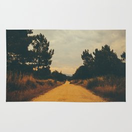 Vintage Faded Dusty Country Dirt Road Rug