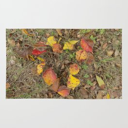Heart of Autumn Rug