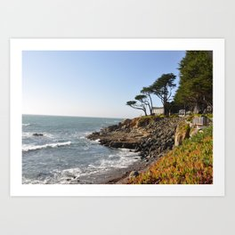 Cambria Coast Art Print