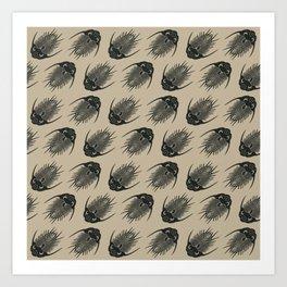 Trilobite Fossils Art Print