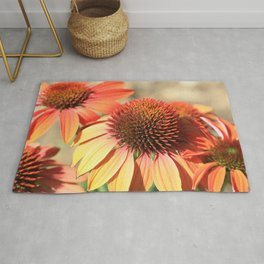 Echinacea Late Summer Bloom by Reay of Light Rug