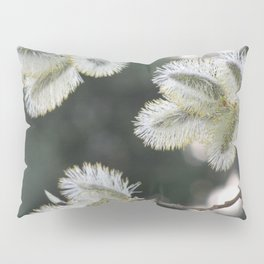 Pussy Willow Pillow Sham