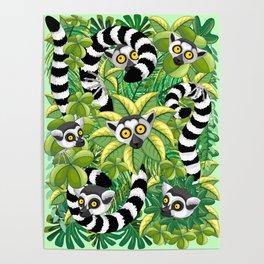 Lemurs on Madagascar Rainforest Poster