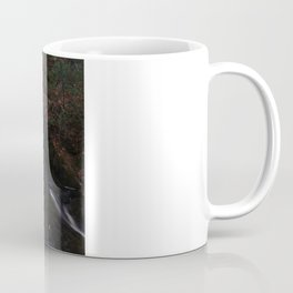 Waterfall Wyandotte Falls, MI Coffee Mug