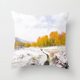 Fall Meets Winter Throw Pillow