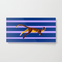 Fossa with color lines #2 Metal Print