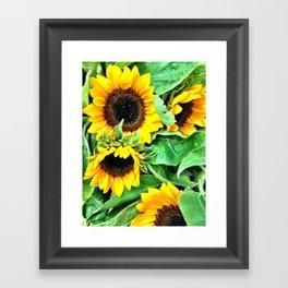 Sunny Days Framed Art Print