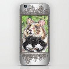 Did Someone Say Nuts iPhone & iPod Skin