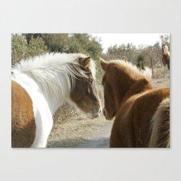 Horse Conversations Canvas Print