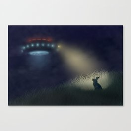 Caught in the Headlights Canvas Print