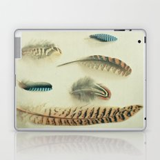 The Feather Collection Laptop & iPad Skin