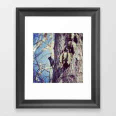 Baby Woodpecker  Framed Art Print