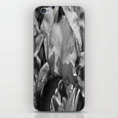 B&W Iris iPhone & iPod Skin